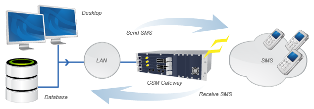 expert-soft-it-bulk-sms-network-diagram
