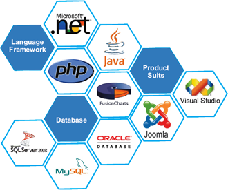 web development in Bangladesh