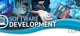 How to Become a Successful Software Developer